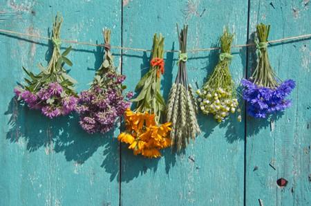 medical flowers
